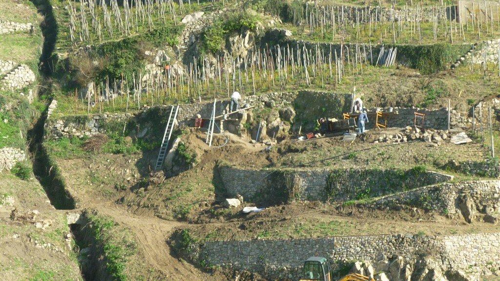 travaux de vigne  mur en pierre appel u00e9 chay u00e9   u00b7 posedepierre